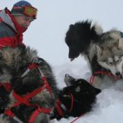 Nicolas et ses chiens
